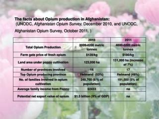 The facts about Opium production in Afghanistan: