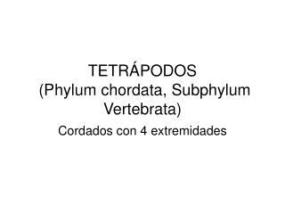 TETRÁPODOS  (Phylum chordata, Subphylum Vertebrata)