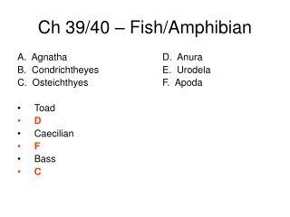Ch 39/40 – Fish/Amphibian