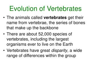 Evolution of Vertebrates