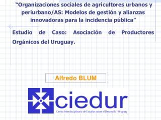 Alfredo BLUM