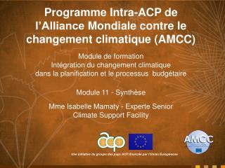 Programme Intra-ACP de  l'Alliance Mondiale contre  le  changement climatique  (AMCC)