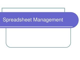 Spreadsheet Management