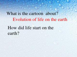 Evolution of life on the earth