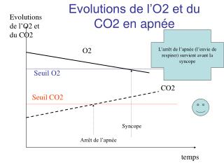 Evolutions de l'O2 et du CO2 en apnée