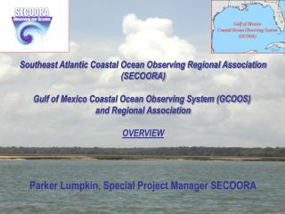Southeast Atlantic Coastal Ocean Observing Regional Association (SECOORA)