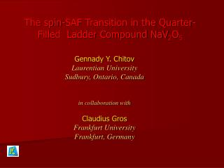 Gennady Y. Chitov Laurentian University Sudbury, Ontario, Canada   in collaboration with  Claudius Gros Frankfurt Univer