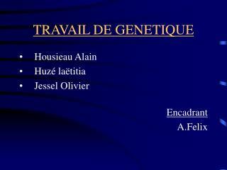 TRAVAIL DE GENETIQUE
