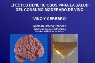 EFECTOS BENEFICIOSOS PARA LA SALUD  DEL CONSUMO MODERADO DE VINO 'VINO Y CEREBRO'