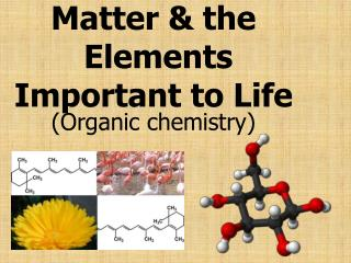 Matter & the  Elements Important to Life
