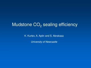 Mudstone CO 2  sealing efficiency
