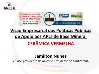 Visão Empresarial das Políticas Públicas de Apoio aos APLs de Base Mineral  CERÂMICA VERMELHA