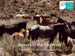 Horses in the Old  West Tools of the Mind Kindergarten