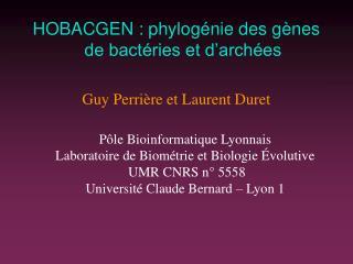 HOBACGEN: phylogénie des gènes de bactéries et d'archées Guy Perrière et Laurent Duret