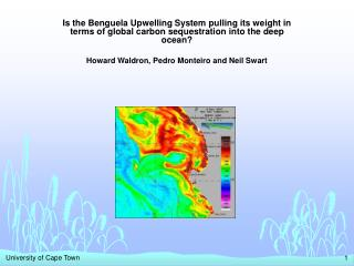 Is the Benguela Upwelling System pulling its weight in terms of global carbon sequestration into the deep ocean  Howard