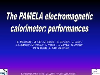 The PAMELA electromagnetic calorimeter: performances