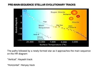 PRE-MAIN-SEQUENCE STELLAR EVOLUTIONARY TRACKS