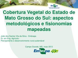 Cobertura Vegetal do Estado de Mato Grosso do Sul: aspectos metodológicos e fisionomias mapeadas