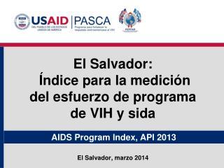 AIDS Program Index, API 2013