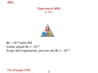 Esperimento MEG e 