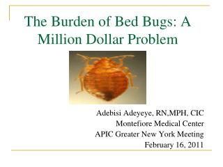 The Burden of Bed Bugs: A Million Dollar Problem