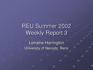 REU Summer 2002 Weekly Report 3
