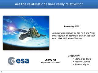 Are the relativistic  Fe  lines really relativistic?