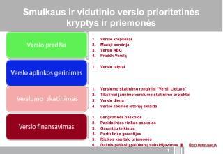 Smulkaus ir vidutinio verslo prioritetinės kryptys ir priemonės
