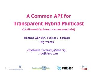 A Common API for  Transparent Hybrid Multicast ( draft-waehlisch-sam-common-api-04)