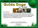 Our MissionGuide Dogs for the Blind provides enhanced mobility to qualified individuals through partnership with dogs wh