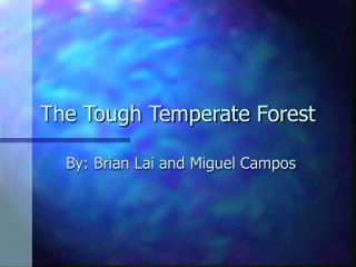 The Tough Temperate Forest
