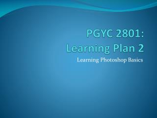 PGYC 2801: Learning Plan  2