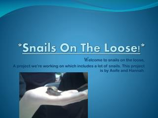 * Snails  O n The Loose! *