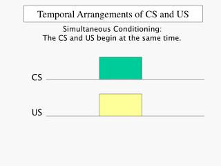 Temporal Arrangements of CS and US