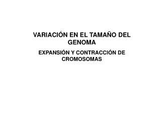 VARIACIÓN EN EL TAMAÑO DEL GENOMA EXPANSIÓN Y CONTRACCIÓN DE CROMOSOMAS