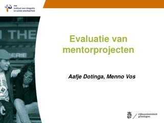 Evaluatie van mentorprojecten