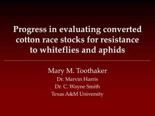 Progress in evaluating converted cotton race stocks for resistance to whiteflies and aphids