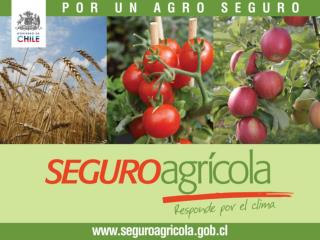 CLIMA EN LA AGRICULTURA