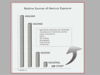 Harmful Effects of Mercury