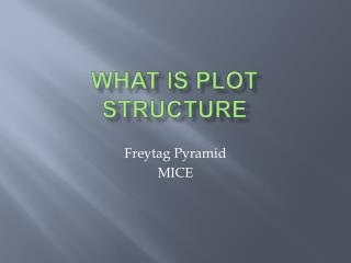 What is Plot Structure