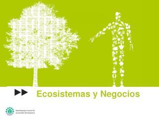 Ecosistemas  y  Negocios
