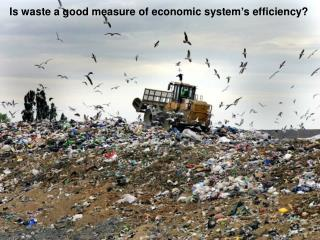 Is waste a good measure of economic system's efficiency?