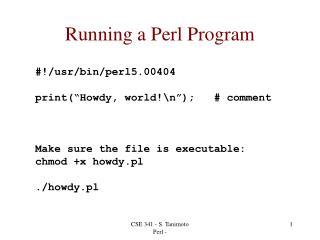 Running a Perl Program
