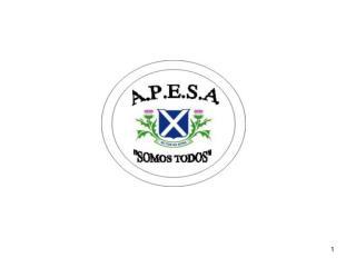 Que es APESA? Actividades desarrolladas durante el 2007. Balance de Caja. Proyectos 2008.