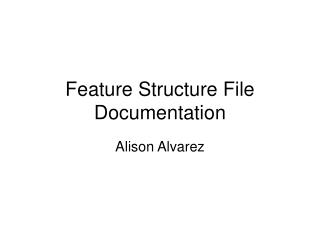 Feature Structure File Documentation