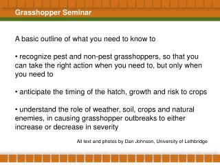 Grasshopper Seminar A basic outline of what you need to know to