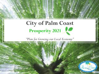 "City of Palm Coast                       Prosperity 2021      ""Plan for Growing our Local Economy"""