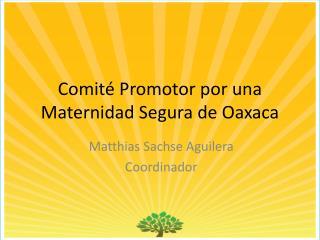 Comité Promotor por una Maternidad Segura de Oaxaca