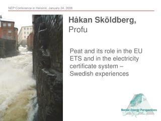 Peat and its role in the EU ETS and in the electricity certificate system – Swedish experiences