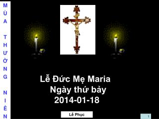 Lễ Đức Mẹ Maria  Ngày thứ bảy 2014-01-18
